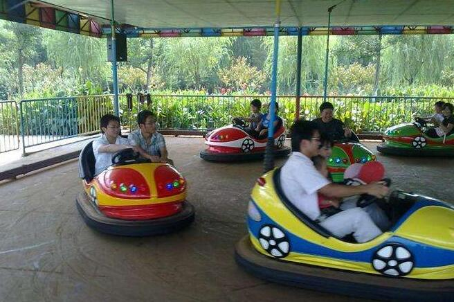 Professional manufacturer of kiddle rides, bumper cars for sale